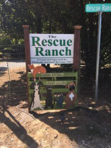 Rescue Ranch